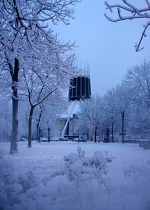 Catholic Cathedral In Snow