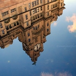 Liver Building Canal Reflection - Anna Nielsson
