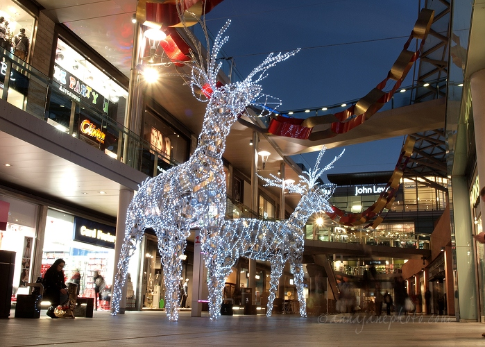 20121128-light-reindeers-liverpool-one.jpg