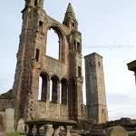 St Andrews Cathedral - Anna Nielsson