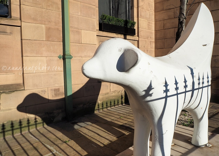 Lambanana Shadows - 20150205-lambanana-shadows.jpg - Anna Nielsson