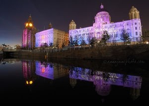 Purple Pier Head