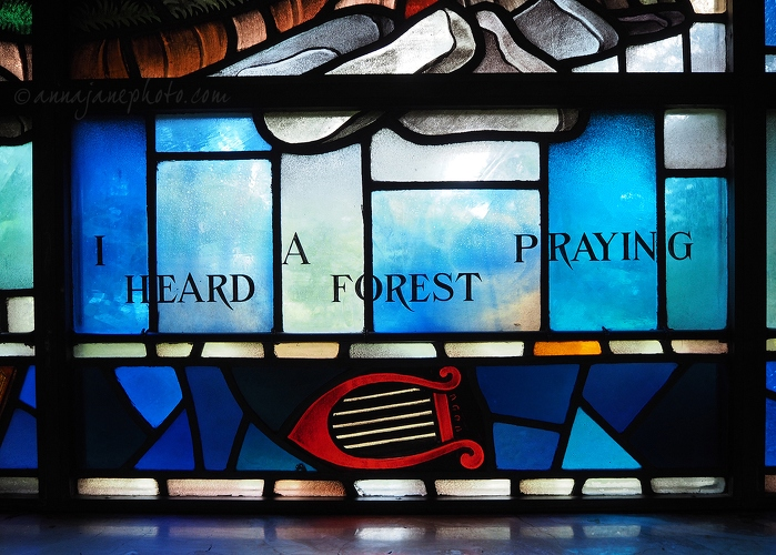 I Heard A Forest Praying - 20150623-i-heard-a-forest-praying.jpg - Anna Nielsson