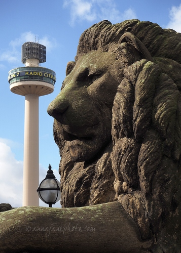 Lion & Radio City Tower - 20160330-st-george's-plateau-lion-liverpool.jpg - Anna Nielsson