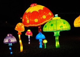 Toadstool Lanterns