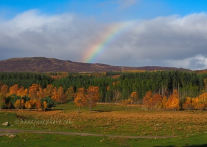 Cairngorms Rainbow
