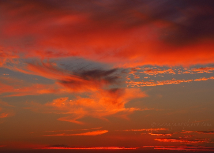 Summit Park Sunset - 20181222-summit-park-sunset.jpg - Anna Nielsson
