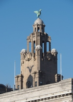 Liver Building with Shadow