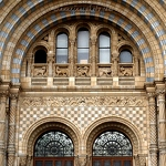 Natural History Museum - Anna Nielsson