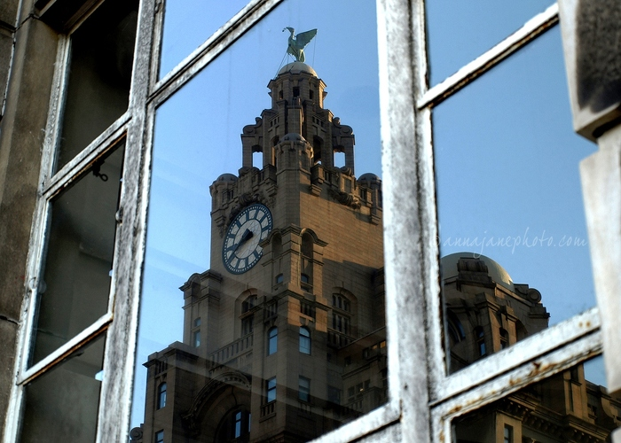 Liver Building Reflection - 20081101-liver-building-reflection.jpg - Anna Nielsson