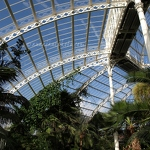 Sefton Park Palm House Interior - Anna Nielsson
