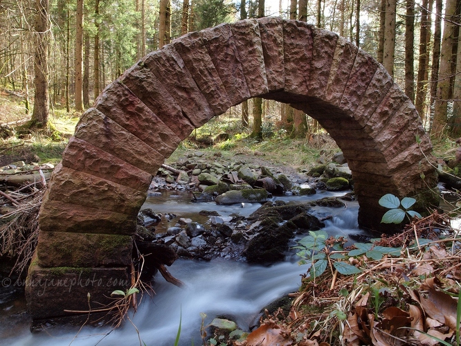 Leaping Arch - 20130404-leaping-arch-by-andy-goldsworthy.jpg - Anna Nielsson