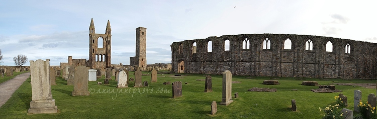St Andrews Cathedral Panorama - 20140411-st-andrews-cathedral-panorama.jpg - Anna Nielsson