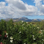 S'Albufereta Nature Reserve & Mountains - Anna Nielsson