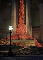 Weeping Window: Poppies