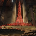 Weeping Window: Poppies - Anna Nielsson