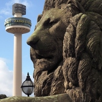 Lion & Radio City Tower - Anna Nielsson