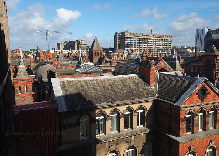 Roofs of North Campus - 20160929-roofs-of-liverpool-north-campus.jpg - Anna Nielsson