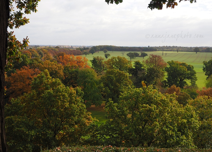 View From Warwick Castle - 20161105-view-from-warwick-castle-mound.jpg - Anna Nielsson