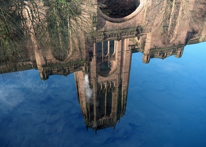 Cathedral Reflection in Spring